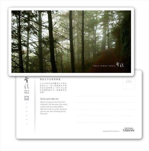 frog聖稜系列明信片  - Forest - 前往七卡山莊的林道