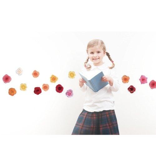 smart Life 創意無痕壁貼◆玫瑰(2張)