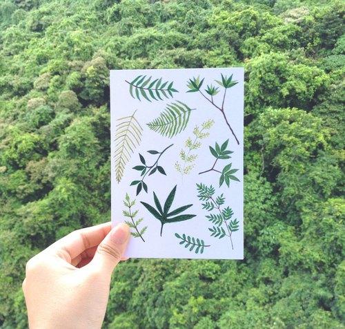 something green 植物明信片