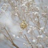 金玫瑰(短練)