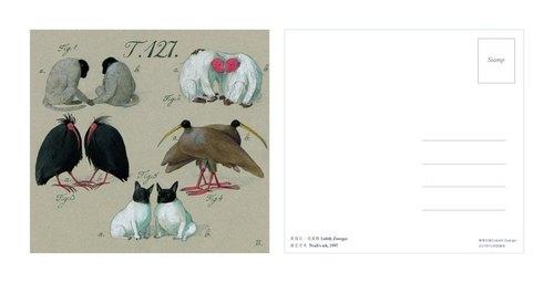 【 國際插畫天后-莉絲白.茨威格】: 明信片-諾亞方舟(諾亞的點名單)