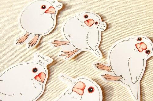 白文鸟手绘防水贴纸组