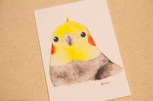 原生玄凤 【日常g】 手绘水彩风格明信片 - birdink