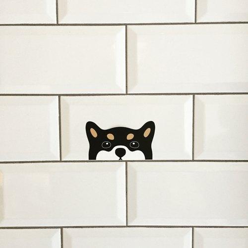 狗出沒注意! 貼紙 •̀ ᴥ •́ 黑柴