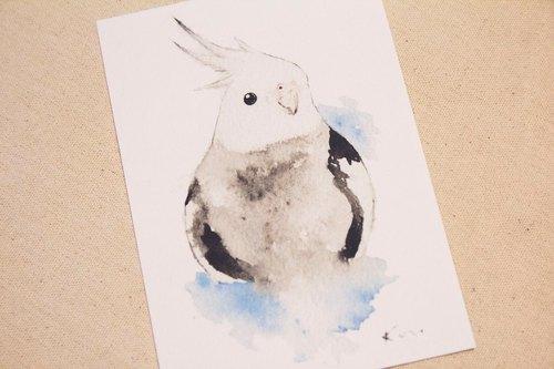 白面玄凤鹦鹉 手绘水彩风格明信片