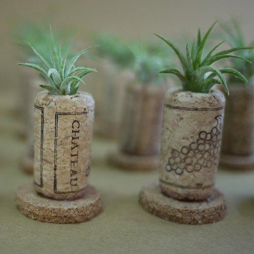 創意花盆、創意植栽、空氣鳳梨(小精靈)紅酒軟木塞襬飾、軟木手作工藝、居家/辦公室飾品、療瘉小物、客製服務、DIY、禮品