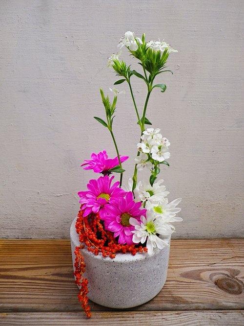 深盆栽-白】水泥花器/水泥花盆/水泥盆栽/水泥植栽/水泥盆器(不含植物