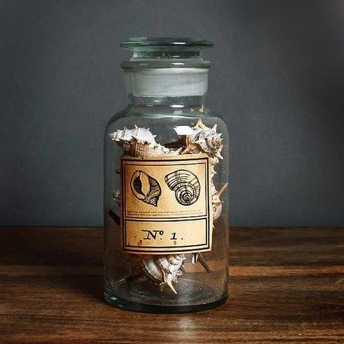 骨螺【海洋礼物】海螺贝壳艺术雕刻玻璃瓶 订做刻字