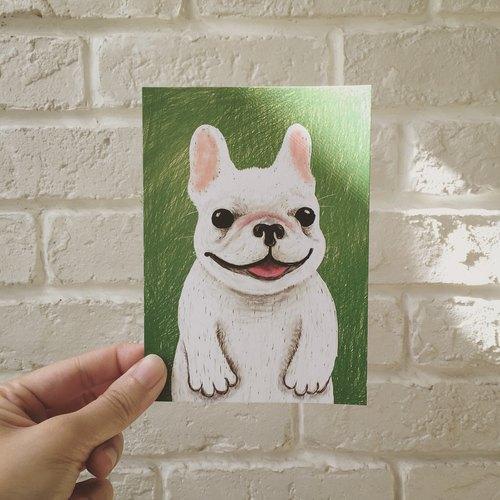 小壯壯法鬥犬 明信片 / 酷卡