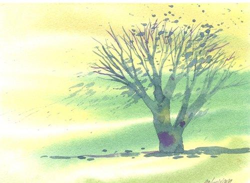 「疗愈系树林系列1-62」水彩手绘限量版明信片/圣诞卡