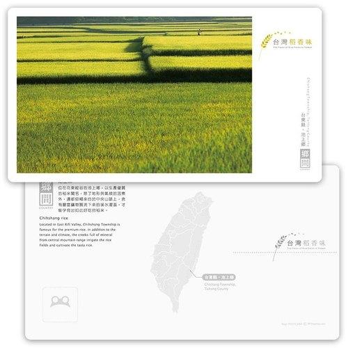 台灣稻香味明信片[鄉間系列] - 池上米