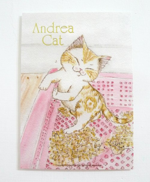 Andrea Cat-富麗街的貓幼貓明信片-帕菲與貓砂盆