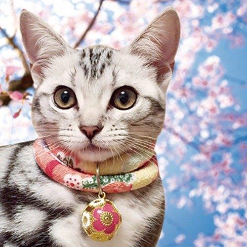 日本和风宠物项圈 (可调式/犬猫通用)