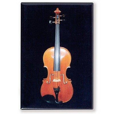 3cm / 材质 / 木材&金属  小提琴包括琴身,琴弦系统和琴弓.图片