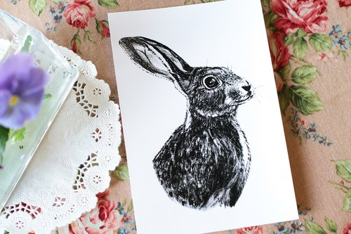 聰明兔明信片
