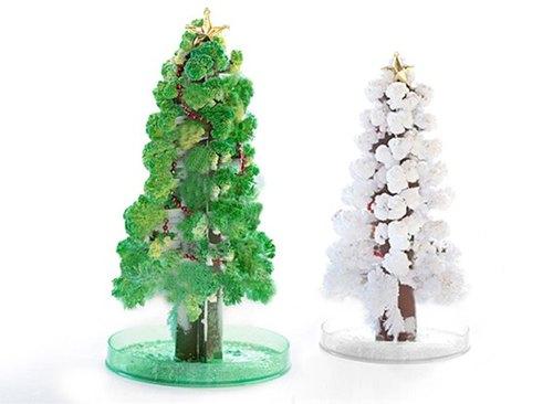 赛先生科学工厂 纸树开花-巨大圣诞树 长青绿