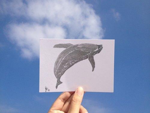 动物/ 座头鲸/ 手绘 /卡片 明信片