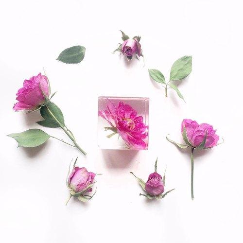 【立體花擺設系列】真花/立體乾燥花/立方體桌上小擺設/桃紅玫瑰花/全人手制作/