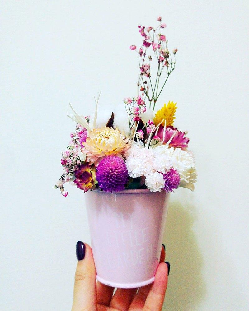 Amilus Christmas Gifts Girls Heart Mini Dry Mini Flower Pots