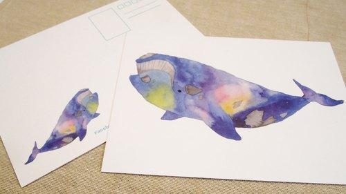 商品创作理念 前一届动物水彩明信片大受欢迎后