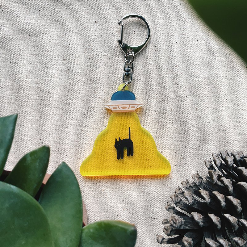 Acrylic key ring cat