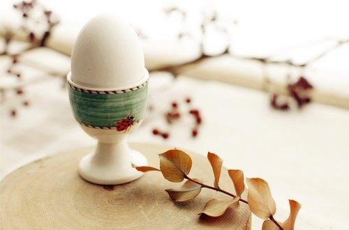 【好日戀物】英國VINTAGE/Wedgwood-Sarah's Garden瓢蟲蛋杯
