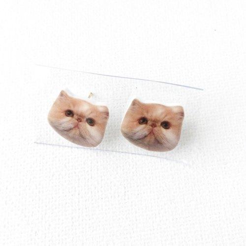 扁面猫 kiki 可爱 耳钉