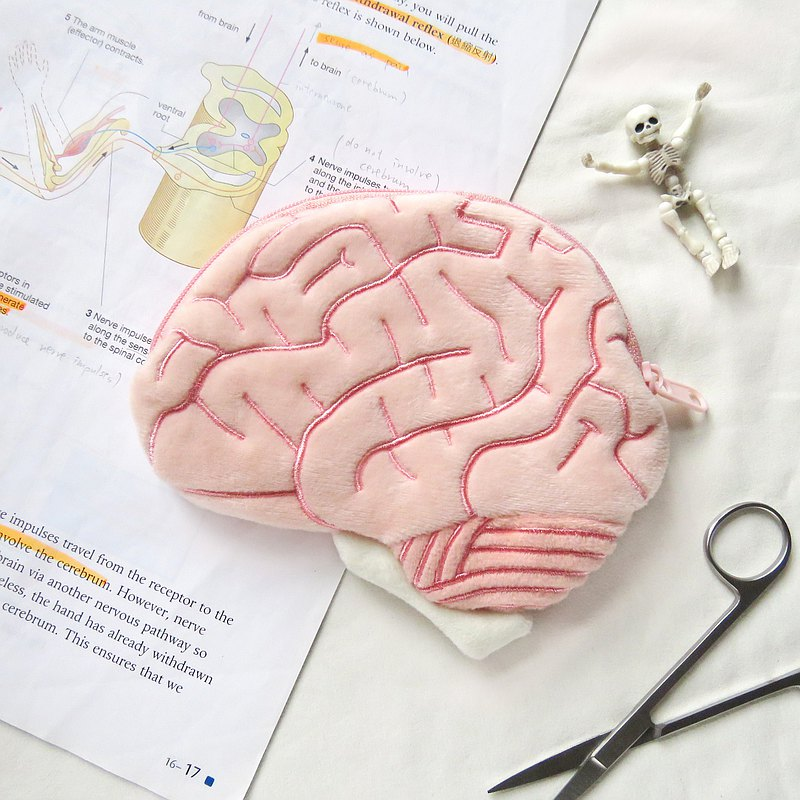 Brain Plush Bag / Essential for Science Students