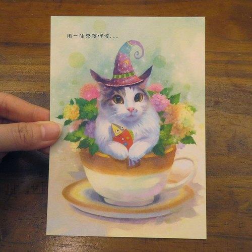 可愛貓咪療愈系緬因貓插畫明信片~魔術貓小不點