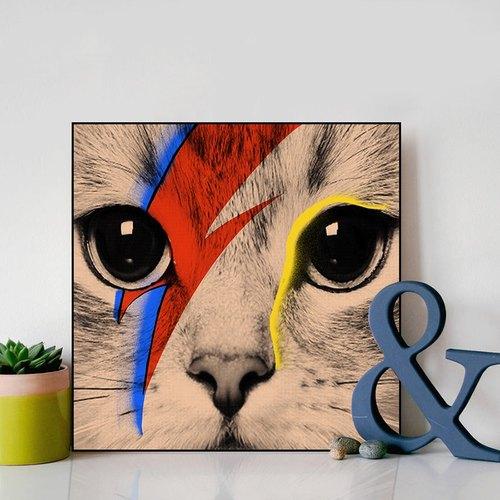 异见 书房玄关装饰画 动物挂画 可爱猫咪水晶版画
