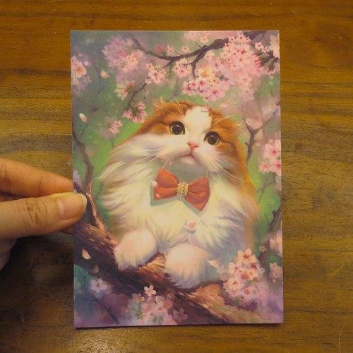 可愛貓咪療愈系蘇格蘭折耳貓插畫明信片~櫻花波妞