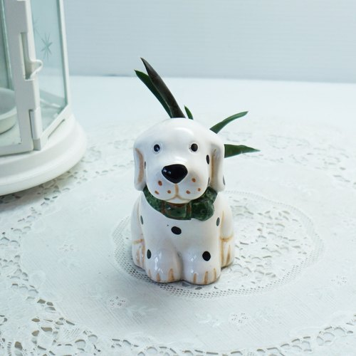【兔子愛多肉】療癒小盆栽,墨玉蘆薈與小狗陶盆