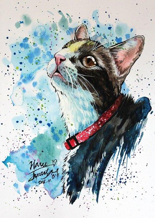 [喵信片] 水彩手绘猫 - haru 虎斑 (单张购买区)