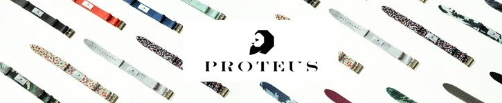 proteus projects