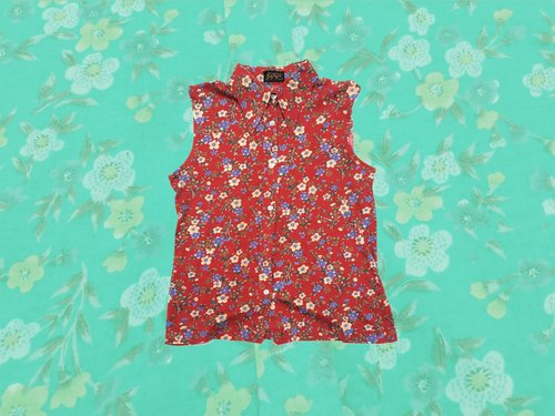 Ancient Cave firm │ │ vintage floral red vest