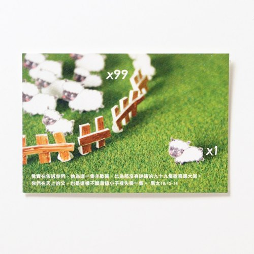 99 sheep Postcard