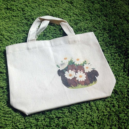 | Pre-Order Deals | squirrel brothers canvas bag |