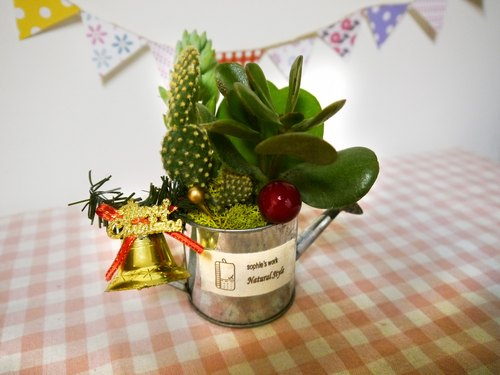 Groceries wind retro small water bottle / Succulents