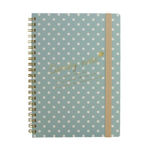 [Japanese] Candy LABCLIP series A5 note notebook / light blue