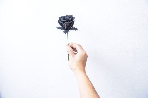 # Leather Rose give you a black rose, I accommodate you all! Comes with wooden pergolas permanent preservation - | Free lettering | Taiwan and Hong Kong Free transport ~