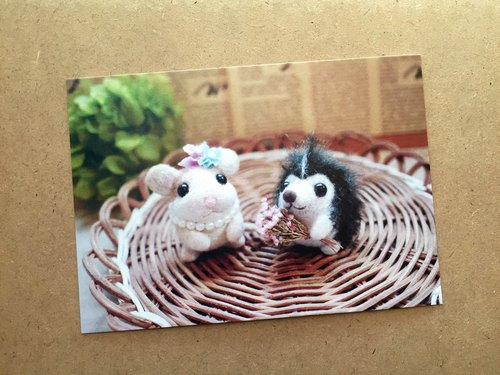 Sheep wool blankets child - small rodents and animals postcard 04- hedgehog