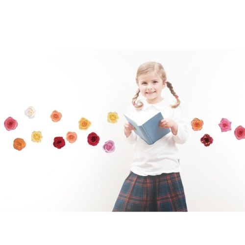 Seamless wall stickers creative smart Life ◆ Rose (2)