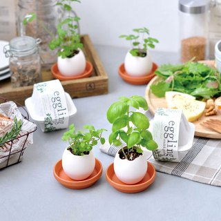 [Environmentally friendly packaging] Eco eggling plant egg / Herb vanilla (three models)