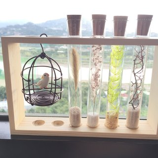 Pure natural bottle in the four seasons test tube dry flower bird cage parrot long wooden frame potted
