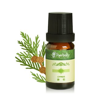 [Herbal true feeling] cypress (unilateral essential oil 10ml/30ml/100ml)