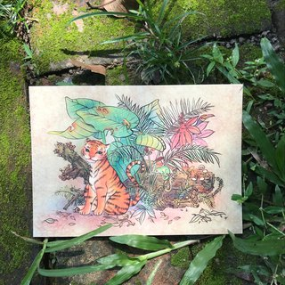 Story Postcard / Card - Tiger / Toucan / Tree Frog - King of the Jungle