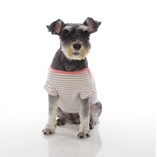 Fabrizio  classic striped trim collar short- pet clothes -2 color