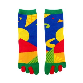 Southern Taiwan fruit / color blue / warm socks if series