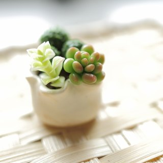 Sweet Dream ☆ mini clay bionic Succulents combination Xiaopen D