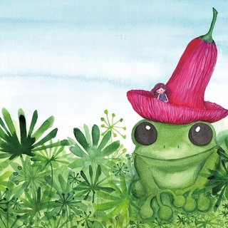 Kai honey and red hat small frog story postcards